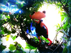 Welcome Petal! (Hamster Hill) Tags: ribbet wonderfrog flickrandroidapp:filter=none kirschemaurine