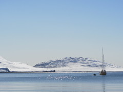 Edurne_Pasaban_groenlandia_greenland_aventura_mountain_montaa_snow_nieve_ice_hielo (edurnepasaban) Tags: snow mountains ice nieve performance peak adventure virgin greenland hielo montaas aventura groenlandia