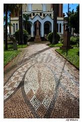 0077 - 0062 (Alf Ribeiro) Tags: city cidade brazil brasil digital day dia sp urbano cor araraquara américadosul alfribeiro