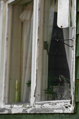 _MG_6244 copy (Bill Gagne Photography) Tags: window reflections reflectionsinwindows canon colors color green canonef135mmf2lusm canoneos5dmkll 135mm ef135mm 135l august summer harwintonconnecticut litchfieldcountyconnecticut thelook billsphotos billgagnephotography