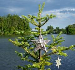 Lakeside Christmas Tree (yooperann) Tags: outdoor christmas tree bass lake gwinn upper peninsula michigan pine stars camp