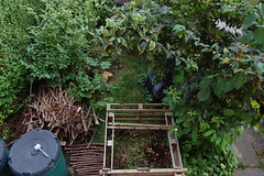 Looking Down on the Front Garden - August 2016 (basswulf) Tags: frontgarden compost compostbin d40 1855mmf3556g lenstagged unmodified 32 image:ratio=32 permissions:licence=c 20160817 201608 3008x2000 lookingdownonthegarden garden normcres oxford england uk