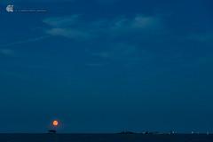 Moonrise over Schleimnde, Maasholm (gerhard.wolff2016) Tags: maasholm mondaufgang nacht ostsee schlei schleimnde wasser balticsea moonrise night water schleswigholstein deutschland de