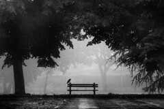 the loneliest place to be (Ivan Peki - www.ivanpekic.com) Tags: mist fog haze wood forest crow bench park dark morning sunrise spooky horror view rest bw black