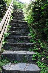 oregon (12 of 147) (SPLTImage Inc.) Tags: oregon trip travel vacation waterfalls ecola coast westcoast nature naturephotography