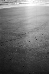 SED (mariana boubet) Tags: bw blackandwhite blancoynegro nikon nikonfm2 sur chile cobquecura sooc film analogue 35mm ishootfilm filmisnotdead beach sea winter decay trip travel backpacking theadventurehandbook sunset earth nature