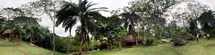 2016-08-07 11.45.35.jpg (bknoles) Tags: kibale westernregion uganda ug