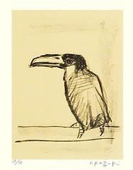 Toucan (Japanese Flower and Bird Art) Tags: bird toucan rhamphastos rhamphastidae yasuo kazuki modern lithograph print japan japanese art readercollection