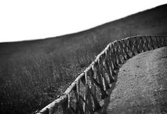 XXHFFX (robra shotography []O]) Tags: minimal bn fence fencefriday bw processed