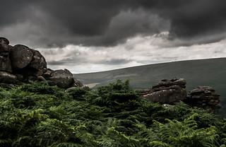 Rain coming in on Dartmoor_Nik-9666