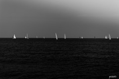 regata_san benedetto del tronto (pist0ls) Tags: regata sbt sea sail adrenalina mille sky water black white negative view