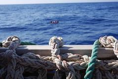 Nudos (bukovo) Tags: dignityi nudos knots rope cabo msf