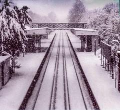 No trains today, 1974 (Richard Murrin Art) Tags: snow trains british railways new eltham se9 rail film fp4 london