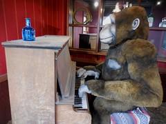 Wall Drug Store Gorilla (Jeffxx) Tags: drug store drugstore wall south dakota 2016 museum gorilla piano