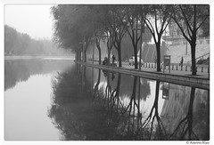 2016-10-14_004(Explored) (Aaron Cat) Tags: aaronhsu canon eos 400d ef35mm f20 usm beijing china 北京 中國 鳥巢 tree river mirror bw blackandwhite
