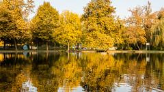 Autumn 012 (Milen Mladenov) Tags: 2016 bulgaria d3200 landscape montana montanesium nikon autumn colors grass leaves orange outdoor park path reflection trees view water waterautumn yellow