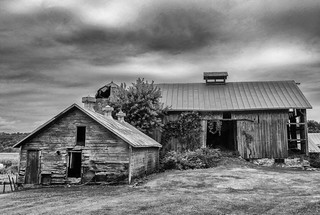 Hog house and barn