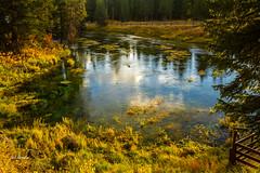 Big Springs (JuneBugGemplr) Tags: bigsprings idaho river headwaters water springs snakeriver