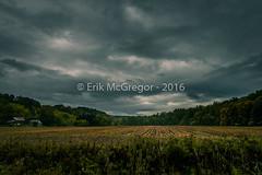 EM-161008-POST-001 (Minister Erik McGregor) Tags: photooftheday farm clouds autumn outdoors naturephotography landscapephotography fall folliage lansing fingerlakes photography nikonphotography nikon 2016 art erikmcgregor 9172258963 erikrivashotmailcom erikmcgregor nyc newyork