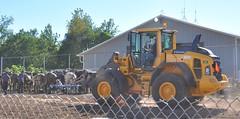 2016 Durham CT Fair (caboose_rodeo) Tags: 815 myothervolvo loader yellow heavyequipment drafthorsepulling contest railroad okayflickrifyousayitsrailraoditsrailraodwhatdoiknow
