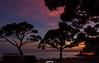 Playa Calea Beee (CREE PING) Tags: salou soleil soir sunlight ombre couleurs mer espagne canon canon7d creeping ciel city nature ngc nuages vie vacances 1740mml arbre coucher landscape paysage