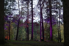 2016 - 14.10.16 Enchanted Forest - Pitlochry (5) (marie137) Tags: enchanted forest pitlochry mobrie137 scotland lights music people water reflection trees shows food fire drink pit patter shapes art abstract night sky tour family walk path bells smoke disco balls unusual whisperer bridge wood colour fun sculpture day amazing spectacular must see landscape faskally shimmer town