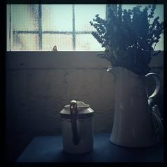 Still life with vase (breakbeat) Tags: hipstamatic oxford instameet instagrammeetup photowalk city hipstamaticapp anniesloan shop cowleyroad painteverything colourful interiordesign stilllife vase jug flowers window light silhouettes