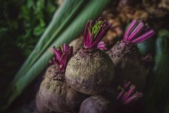 Beetroots (Syahrel Azha Hashim) Tags: market produce beetroots closeup veggie 2016 groceries light malaysia naturallight vegetables details simple colorful food colors rawfood fresh nopeople colorimage variety sony shallow a7ii ilce7m2 dof healthyfood handheld green prime sonya7 35mm travel syahrel leafs detail