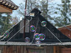 soap bubbles (Ryuu) Tags: bubbles roof building soapbubbles trees sky wooden wall roofs desks wood bubble blue reflection light floating air round chains architecture bokeh