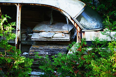 Old car in the woods (KWaterhouse) Tags: junkyard scrapyard car abandoned rust rusty old automobile autos forgotten ontario canada nikond5300