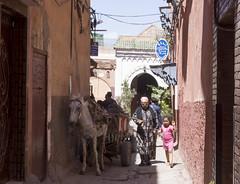 Marrakech - Morocco (wietsej) Tags: marrakech morocco souk donkey grandmother child sonyalphanex7 sonycarlzeiss24mmf18lenssel24f18z