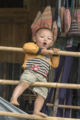Hamming it up (tmeallen) Tags: youngboy playing ethnicminority bamboopoles houseporch hammingitup openmouth tavanvalley sapa northernvietnam