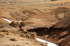 After the Blizzard Rangipo Desert Volcanic Plateau New Zealand (eriagn) Tags: earth sand ash gravel ice melt snow patterns textures earthy tussock dry wet moisture rangipodesert dust tones earthytones hues volcanic windswept erosion elements habitat ecosystem harsh cold rainshadow geological taupo newzealand northisland rangipo tongarironationalpark kaimanawaranges spring rugged statehighway1 nativeshrubs ancienttree roots exposed overcast cloudy landscape spectacular eriagn ngairehart photography roadtrip hardy fragile geology flora hills tree gnarly lava rangipogravelfield pumice tukinoskifield unescoworldheritage
