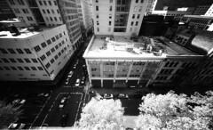 Rialto (spiritusmentis) Tags: leica bw bar downtown voigtlander aerial ii cropped ttl 12mm f56 portlandoregon ilford m6 rialto redfilter heliar 085 aspherical 25a sfx200 lhsa