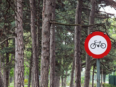 Bike road (Lukinator) Tags: road park trees red tree green rot bike bicycle sign forest garden circle ast branch label strasse branches plate schild round rod about signpost grn ste wald rund bume spruce baum description fahrrad circular fichte cycles stange fahrrder bough kreis wegweiser scheibe escutcheon beschreibung rundschreiben