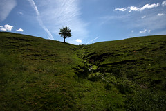 A Tree, Hill and Sky (Silversven) Tags: sky day derbyshire clear landscapemhill