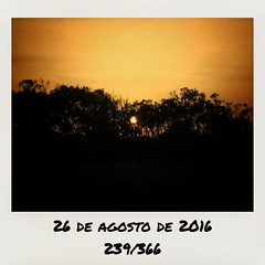 Cae la #tarde #undiaunafoto #picday #beach #vera #playa (juan moreno cobo) Tags: tarde undiaunafoto picday beach vera playa
