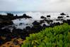 DSC_6502 (reflective perspicacity) Tags: hawaii oahu july2016 nikond300 lanikaibeach waimanalo kailua honolulu ocean pacificocean