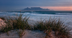 Table Mountain Dune Grass (Panorama Paul) Tags: paulbruinsphotography wwwpaulbruinscoza southafrica westerncape capetown tablemountain blaauwbergbeach sunset longexposure nikond800 nikkorlenses nikfilters