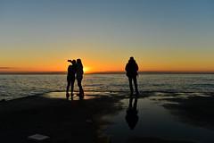 The tyranny of the selfie (sergi_escribano) Tags: streetphotography documentaryphotography barcelonastreetphotography barcelona streetsofbarcelona dawn sunrise landscape selfie sea beach fisherman sun barceloneta