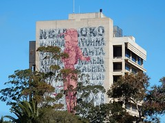 Wonderful Big Mural (mikecogh) Tags: portadelaide mural publicart striking kaurna large wall woman text gumtrees