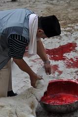DSC_0023 () Tags: musulmani moschea xian cina festival sacrificio mucca pecora beef sacrifice china mosque