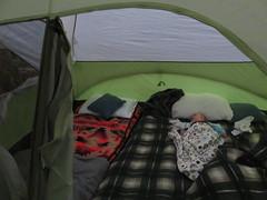 tent sleeper (carolyn_in_oregon) Tags: mthoodnationalforest lostcreek camping mthood jacob oregon