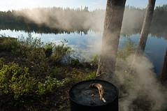 Brochet au barbecue (Samuel Raison) Tags: finlande finland mkki mkkilife brochet pche lac nikon nikond2xs nikon41635mmafsgvr