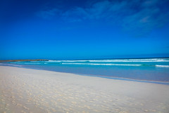 The white sandy beach of Tortuga Bay.