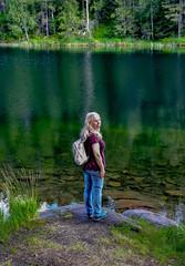 Lakeside (bjorbrei) Tags: lake water tarn pond shore forest calm gryta lillomarka marka oslo norway