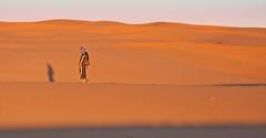 Walking Alone (Ellsasha) Tags: desert walker loneliness shadows morocco dunes sahara people person sand twop