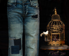 shop window (dotintime) Tags: shop store window display merchandise patch jeans fade worn brokenin bird cage white gold old dotintime meganlane