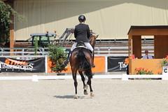 IMG_8152 (dreiwn) Tags: dressage dressur dressuur pferd reitturnier turnierreiten pferdesport horse horseback horseriding equestrian reitverein dressurprfung kandare doublebridle reiten pferde reitplatz ridingarena