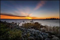 Grisselren (Jonas Thomn) Tags: sunset solnedgng stenar stones sea hav havet moln clouds sky himmel grs grass grisselren soklot reeds vass evening kvll filter nd400
